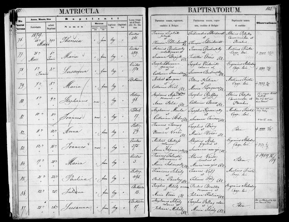 Pedigree slovakia, american slovaks, emmigration from slovakia, ancestry tours slovakia, genealogical tours slovakia