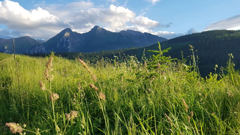 hiking tour in high tatras