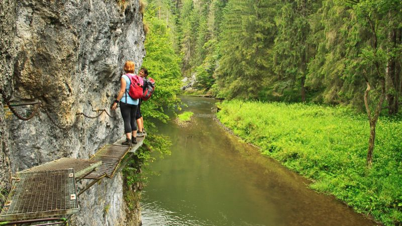 hiking tour operator slovakia